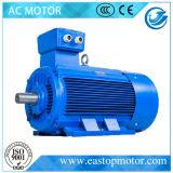 Y3 3HP Motor für chemische Industrie mit externem Terminal