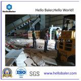 A la machine de emballage automatique de série pour la centrale ondulée (HAS4-6)