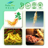 PE Standard Ginseng américain Extract (10%-80%Ginsenoside, 50% Polysaccharide)