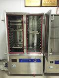 Cuiseur à vapeur à induction électrique