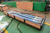Pompe simple Glb600/18 de cavité de /Progressive de pompe de vis de matériel de pétrole et de gaz
