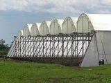 Réseau d'insectes à base de serre HDPE en Amérique du Sud