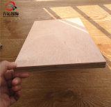 blad van het Triplex van de Eucalyptus van 18mm het Okoume Onder ogen gezien