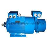 Jahr-Serien-Wundläufer-Beleg Ringthree-Phase asynchroner Motor IP44orip54
