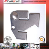 Blac 도금으로 각인하는 OEM CNC 그림 강철 금속