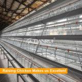 Клетка батареи цыпленка слоя фабрики сразу горячая гальванизированная автоматическая