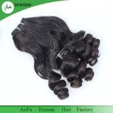 新しい方法Fumiのバージンの毛自然なカラー100%人間の毛髪
