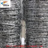 Сеть лезвия бритвы нержавеющей стали