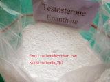 Testosterona Enanthate de los esteroides del 99% CAS 315-37-7 para el edificio del músculo