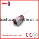 1cg/1dg - Macho da matriz de Rnw 24 conetores hidráulicos do selo do anel-O de /Bsp do cone do grau de fábrica apropriada do adaptador