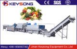 Моющее машинаа пузыря/шайба пузыря/технологическая линия овоща и плодоовощ