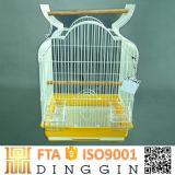 Cage d'oiseaux de vente en gros de qualité supérieur
