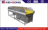 De plantaardige Wasmachine van de Borstel|De industriële Schoonmakende Wasmachine van de Borstel