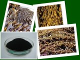 Fiocchi/polvere dell'estratto dell'alga di serie dell'esperto in informatica di X-Humate