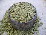 La mejor calidad y los nuevos granos de la semilla de la calabaza de la piel del brillo de la cosecha