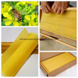 Fundação amarela pura do pente do mel de 100% com alta qualidade