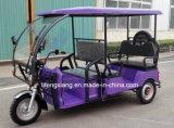 熱い販売のインドの電気3つの車輪の人力車