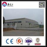 Taller de la estructura de acero del diseño de la construcción (BYSS051601)