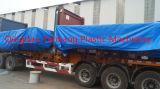 Máquina moldando nova personalizada do sopro do tanque de água da boa qualidade