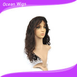 Brazilian Body Wave Hair Lace Wig