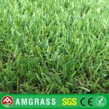 12000dtx PE Monofilament Artificial Carpetおよび庭Synthetic Grass