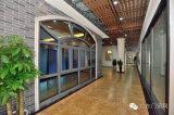 Fenêtre à charnière en aluminium Foshan Manufacture Thermal Break avec 304ss net (série 55)