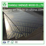 Hot Sale 1220X2440mm and 915X1830mm with Logo Film Faced Plywood