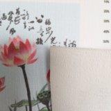 Linhas impressas pano do algodão e do linho de parede para a decoração Home
