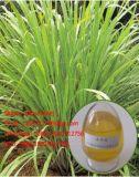 Petróleo de citronela natural puro da matéria- prima das folhas de 100% no tipo do petróleo essencial