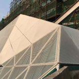 Engranzamento de alumínio personalizado alta qualidade do metal para o edifício decorativo