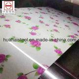 Teste padrão de flor Prepainted galvanizado PPGI para a casa do edifício