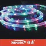 Lumière de corde de porte de la lumière d'InWaterproof LED (HS-17)