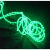 Lumière de Noël de LED (HS-16)
