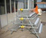 de Kooi van de Laag van het Ei van het Gevogelte 4layers 160chickens met de Prijs van de Fabriek