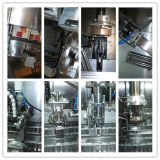 Vollautomatische UHT-Getränkeverpackungsmaschinen (BW-2500B)