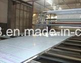 hoja del policarbonato de 5m m para el uso del interior de las paredes de la protección