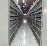Cremagliera del pavimento di mezzanine di memoria
