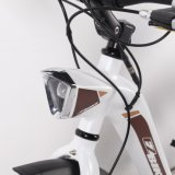 Vélo électrique électrique de Madame E Bike 36V 250W de vélo de l'Europe