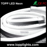 câble au néon de 230V 120V 24V SMD5050 DEL RVB