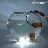 極度の明るい35W T6 H1 Csp LEDのヘッドライトの変換キット