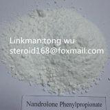Nandrolone Phenylpropionate (durabolin) CAS no.: 62-90-8