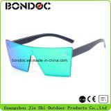 De beste Plastic Klassieke Zonnebril van het Ontwerp