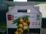Zurückführbarer Kasten-Polypropylen Corflute Box/PP Polypropylen-Obst- und GemüsePlastikkarton Coroplast Kasten