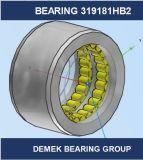 Unidad 319181 Hb2 del rodamiento de rodillos de la indexación de direcciones de la alta calidad