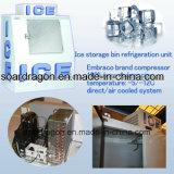 Escaninho Inclined ao ar livre do congelador do gelo