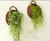 (BC-WF1004) Cestino naturale Handmade del fiore del salice di alta qualità