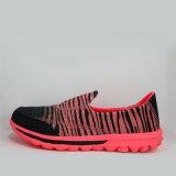 Sapatas de confeção de malhas da forma macia New-Style da sapatilha para mulheres