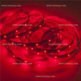 LEIDENE van de Volt 5050SMD van Kerstmis van het merk de Lichte 24V Verlichting RGBW van de Strook