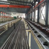 Boyau flexible hydraulique tressé de tuyau pour En853-2sn-08