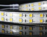5050 Ce/RoHS를 가진 단 하나 색깔 120LEDs/144LEDs LED 표시등 막대